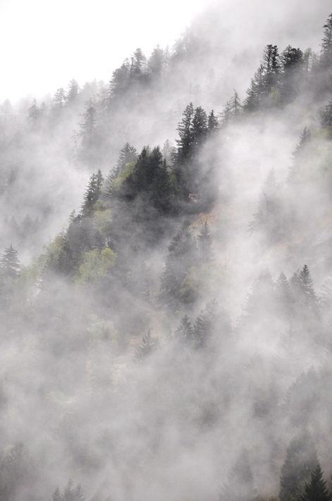 Paolo Bongianino, nebbia in montagna, stampa fine art su carta cotone, 2014