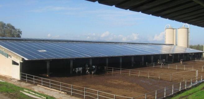 Legge di stabilità 2016: reddito fotovoltaico per aziende agricole
