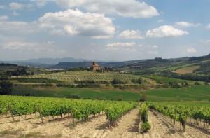 Toscana Viandanza